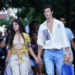 Shawn Mendes et Camila Mendes en couple pour le buzz ? Le chanteur réagit