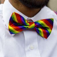 Canal+ lance une chaîne digitale consacrée aux créations LGBTQ+