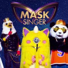 Mask Singer : toutes les célébrités qui se cachaient sous les costumes