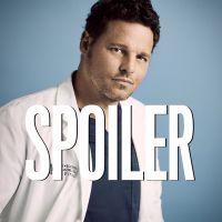 Grey's Anatomy saison 16 : Alex Karev n'est pas (encore) mort, la preuve dans l'épisode 12