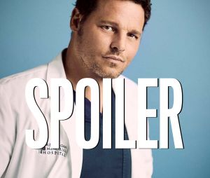 Grey's Anatomy saison 16 : les autres options envisagées pour le départ d'Alex