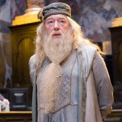 Harry Potter 6 : pourquoi la scène des funérailles de Dumbledore n'est pas dans le film ?