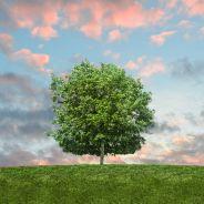 Journée de l'environnement : 7 chiffres déprimants qui doivent nous motiver pour agir