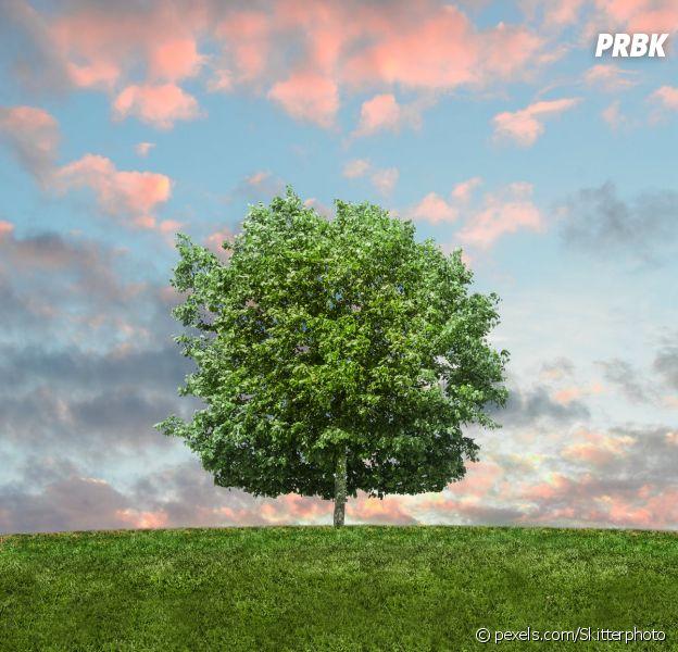 Journée mondiale de l'environnement : 7 chiffres à retenir sur la pollution, le gaspillage ou encore les déchets