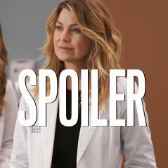 Grey's Anatomy saison 17 : (SPOILER) juste de passage ou de retour dans la suite ?
