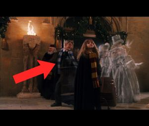 Derek Hough dans Harry Potter
