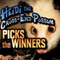 Oscars 2011 ... Heidi l'Oppossum nous donne une partie des gagnants