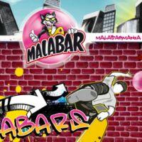 Malabar ... la nouvelle mascotte est un chat