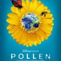 Pollen de Disney ... petit flirt entre abeilles et fleurs