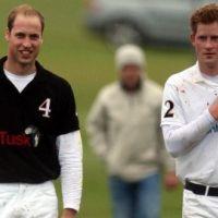 Harry et William ... Les princes jouent au polo pour la bonne cause (PHOTOS)