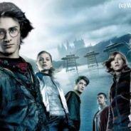 Harry Potter : coup de baguette magique sur les audiences de TF1