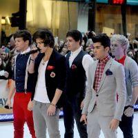 One Direction : les fans en folie à l'avant-première du DVD Up All Night !