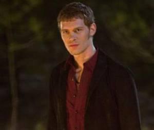 Klaus et les Originels débarquent