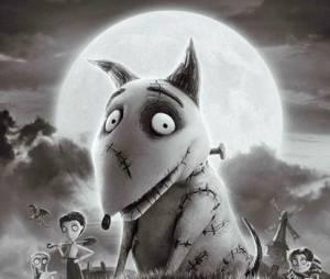 Frankenweenie, un film parfait pour Halloween