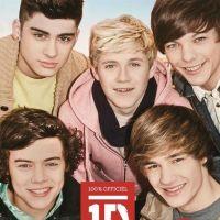 One Direction - Jusqu'au bout du rêve : le livre indispensable à dévorer
