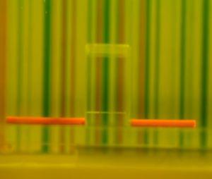 Le scientifique Baile Zhang présente sa boîte d'invisibilité