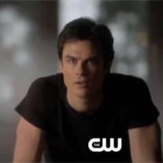 The Vampire Diaries saison 4 : Stefan et Damon complotent contre Elena (SPOILER)