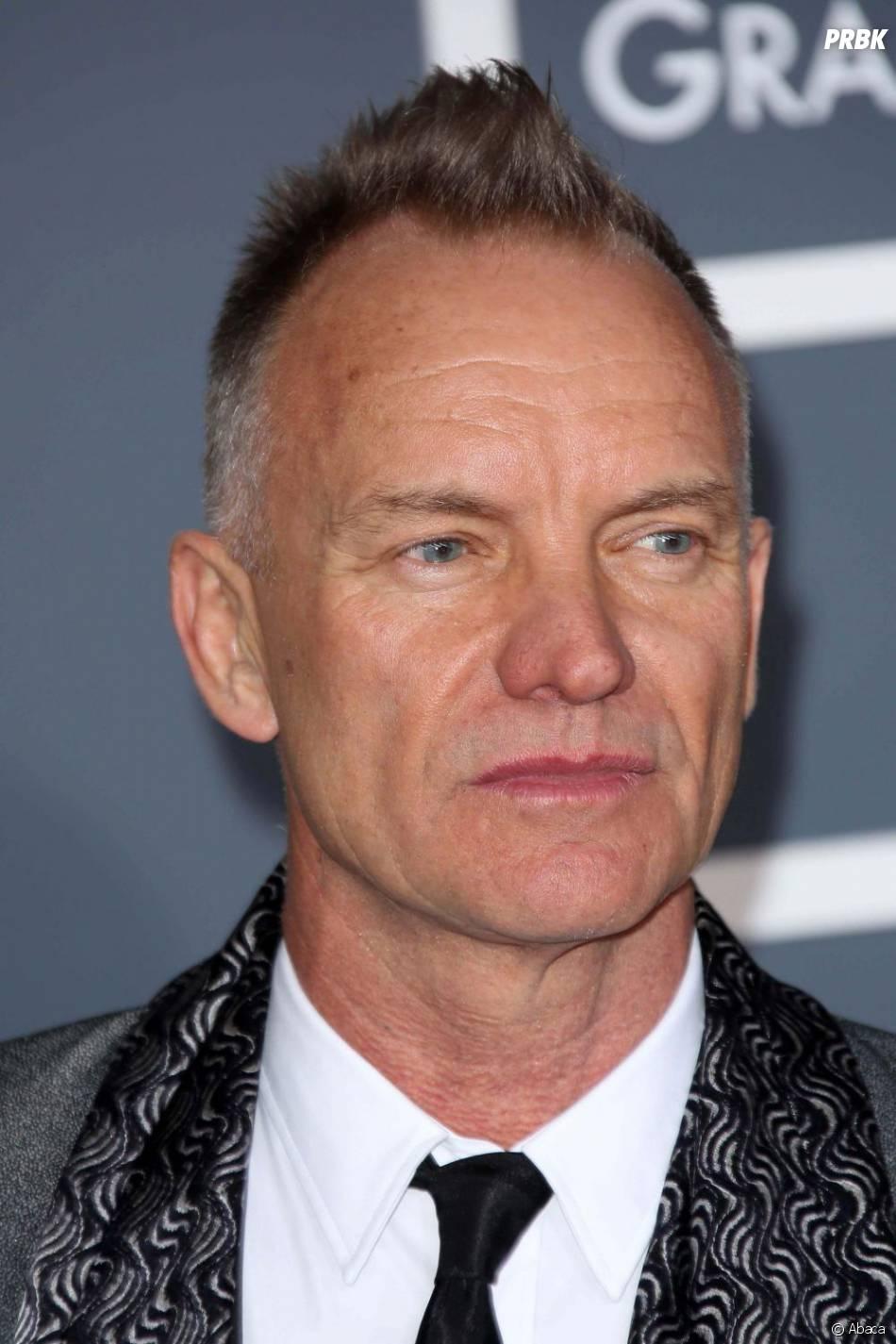 Sting aussi présent au Main Square Festival 2013