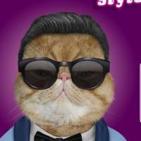 Psy : star malgré lui de la nouvelle publicité de Virgin Mobile