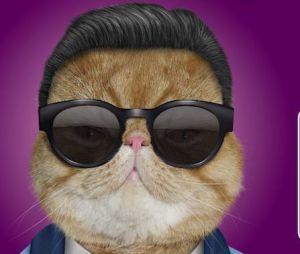 Psy, nouvelle star de la pub pour Virgin Mobile