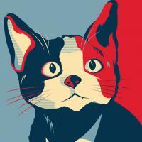 """Mexique : un chat en course pour devenir maire """"Yes we cat"""" !"""