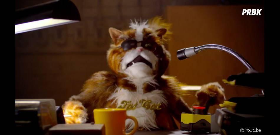 La dernière publicité de Popchips met en scène des chats à perruque et Katy Perry