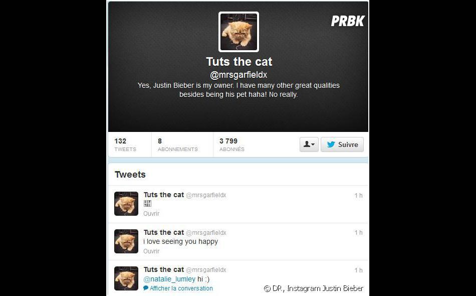 Tuts, le chat de Justin Bieber, a son propre compte Twitter
