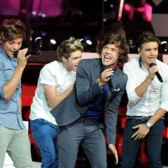 """One Direction : """"des monstres qui s'attrapent les fesses sur scène"""""""