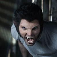 Teen Wolf saison 3 : Derek à l'honneur, la vérité sur Lydia, le Comic Con 2013 en mode loups-garous