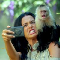Katy Perry : son clip Roar fait rugir la PETA