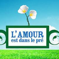 """L'amour est dans le pré 2013 : le """"vrai"""" bilan des couples de cette saison 8"""