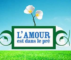 """L'amour est dans le pré 2013 : le """"vrai"""" bilan."""