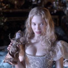 La Belle et la Bête : le conte de fées au cinéma le 12 février