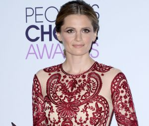 People's Choice Awards 2014 : Stana Katic de Castle remporte un prix