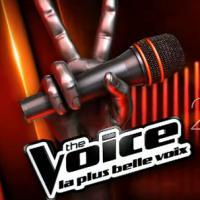 The Voice 3 : Mika, nouvelle épreuve... retour sur les nouveautés de la saison