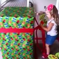 [CUTE] Un papa militaire de retour de la guerre fait une surprise à sa fille