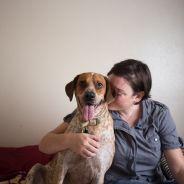 [CUTE] Adorable série photo : des animaux adoptés posent à côté de leur maître