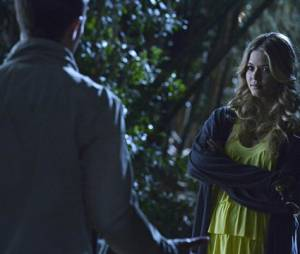 Pretty Little Liars saison 4, épisode 24 : Alison sur une photo