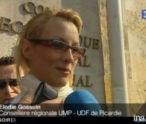 Elodie Gossuin : son poste de conseillère régionale en Picardie fait débat