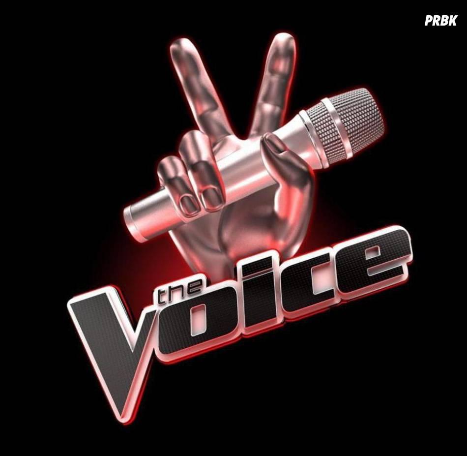 The Voice : qui sera la grand gagnant à l'issue de la finale diffusée sur TF1 ?
