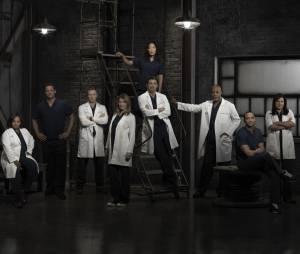 Grey's Anatomy : une saison 11 déjà commandée par ABC