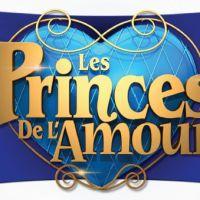 Les Princes de l'amour 2 : Raphaël, Anthony.. le salaire des prétendants dévoilé