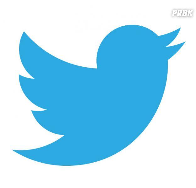 Twitter : quels moyens pour lutter contre les hashtags homophobes et autres dérapages ?