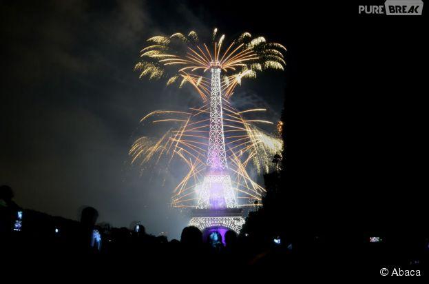 14 Juillet 2014 : un feu d'artifice magique tiré depuis la Tour Eiffel