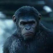 La Planète des singes 2 : une suite sombre et intense à ne pas rater