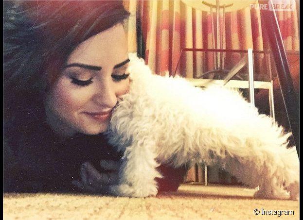Demi Lovato : gaga de son petit chien, reçu en cadeau pour Noël 2014
