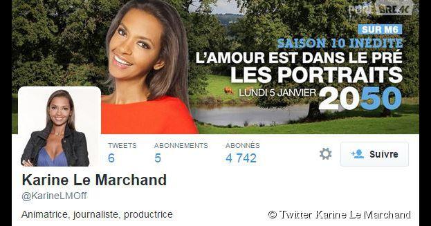 Karine Le Marchand enfin sur Twitter en 2015