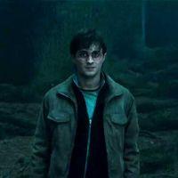 Harry Potter : un acteur oscarisé pour le spin-off ?