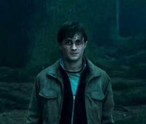 Harry Potter : un acteur oscarisé au casting du spin-off ?