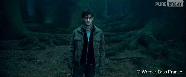 Harry Potter : un acteur oscarisé au casting du spin-off ?